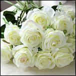 Нажмите на изображение для увеличения.  Название:розы.jpg Просмотров:14 Размер:64.7 Кб ID:15510